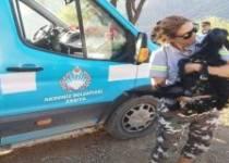 Akdeniz Belediyesi, yangından etkilenen hayvanları unutmadı