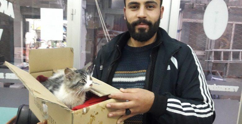 Yavru kediyi donmaktan kurtardı