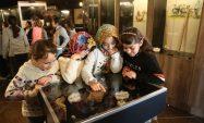 Erdemli'de Yörük tarihi yaşatılıyor