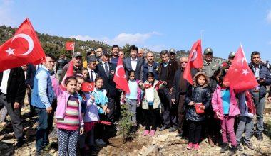 Erdemli Şehit ve Gaziler Ormanı'na 500 fidan dikildi