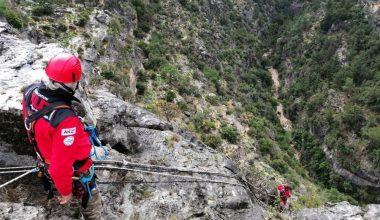 Kayalıklarda mahsur kalan keçiler AKUT ekiplerince kurtarıldı