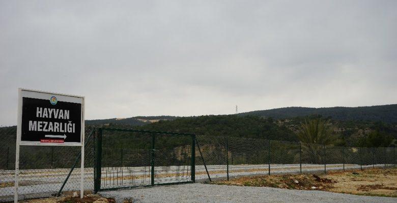 Mersin'de belediyeden hayvan mezarlığı