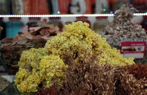 Bahar geldi, alerjik hastalıklar çoğaldı, bitki çaylarına rağbet arttı