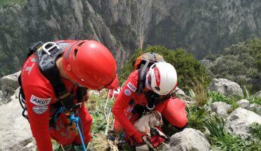 Kayalıklarda mahsur kalan 3 keçi, 6 saatlik operasyonla kurtarıldı