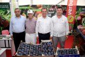 Hal Arena Mersin Tarım Sergisi açıldı