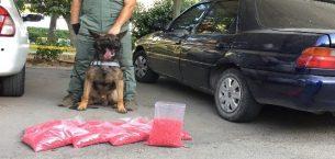 72 bin 500 adet uyuşturucu hap ele geçirildi