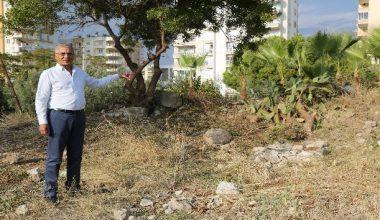 Bilim adamı Aratos'un anıt mezarının gün yüzüne çıkarılması için destek talebi