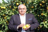 """Başkan Tollu: """"Limon tüketin, hastalıklardan korunun!"""""""