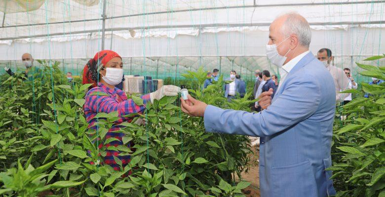 Gültak, 1 Mayıs'ta, Seralarda Çalışan Tarım İşçilerini Ziyaret Etti