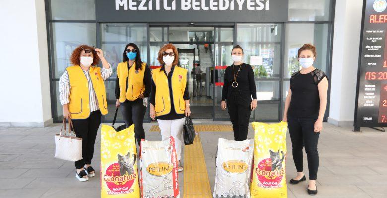 'SOKAKTAKİ DOSTLARIMIZI UNUTMAMALIYIZ'