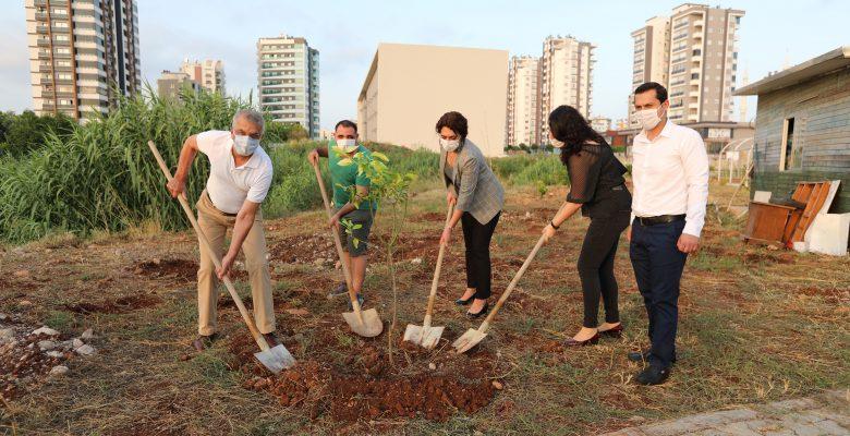 Mezitli Belediyesi Güneş Günü Etkinliği Düzenledi