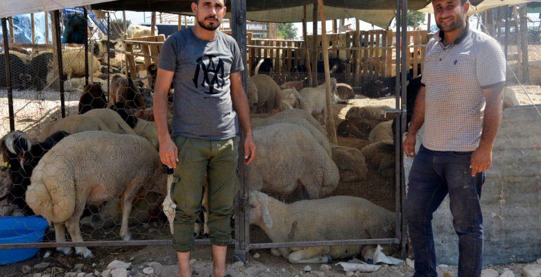Yenişehir'de kurbanlık satış alanında pandemi önlemleri