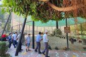 Şehit yakınları Tarsus Gençlik Kampında
