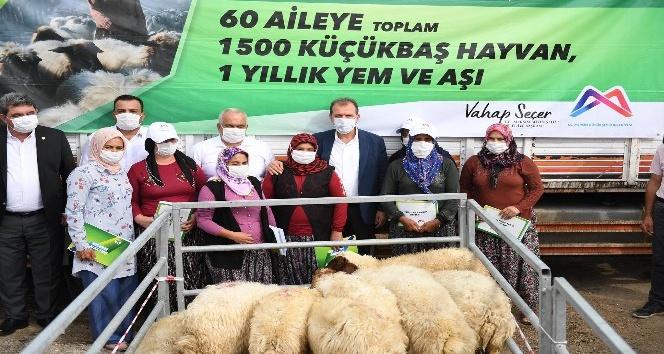 Büyükşehir'den üreticiye hayvan desteği