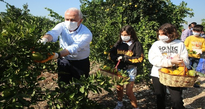 Başkan Gültak, Çocuklarla İzmir İçin Mandalina ve Portakal topladı