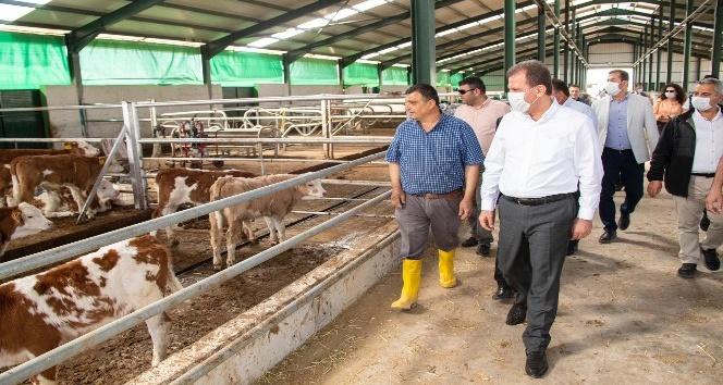 """""""2021 yılında tarım projelerinin maliyeti 24 milyon 728 bin lira"""""""