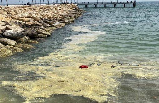 """Deniz yüzeyi sarıya boyandı; """"Kimyasal, gemi ya da kara kaynaklı bir kirlilik değil"""" açıklaması yapıldı"""