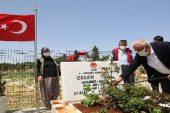 Erdemli Belediyesi, Şehit mezarlarını çiçeklerle yeniledi, bakımlarını yaptı