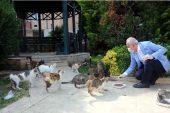 Başkan Gültak'tan Sokak Hayvanları İçin Çağrı