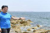 Marmara'yı kaplayan müsilaj, Akdeniz'de beklenmiyor