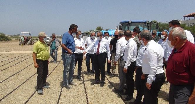 Damla sulama yönetimi ile çeltik ekim töreni düzenlendi