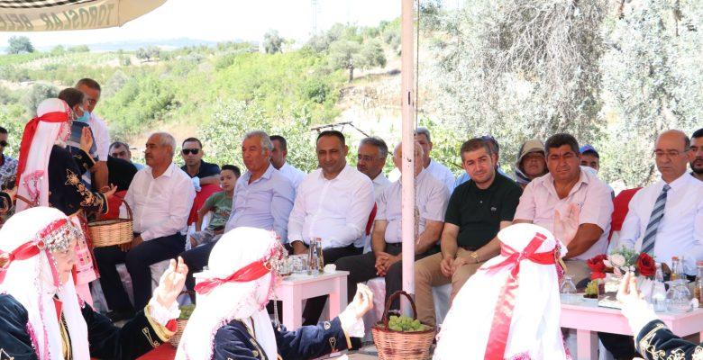 Başkan Yılmaz, Hemşehrileriyle Bağda Üzüm Kesti