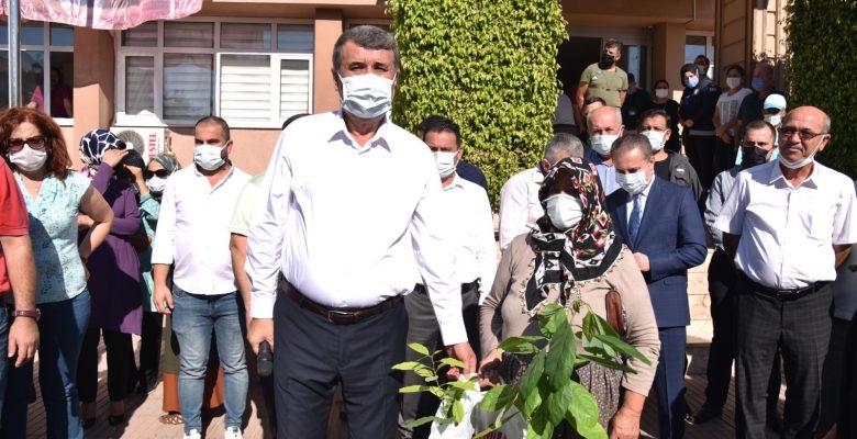 Anamur Belediye Başkanı Hidayet Kılınç, kadın çiftçilere avokado fidanı dağıttı